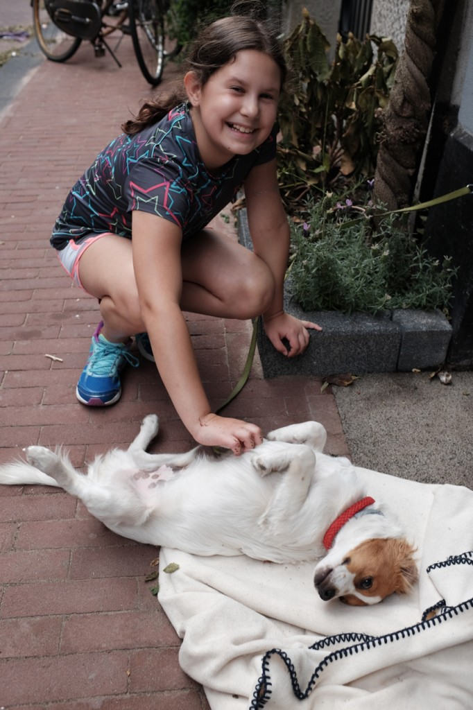 Tummy scratches in the Jordaan neighborhood of Amsterdam