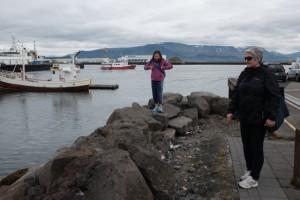 Reykjavik marina