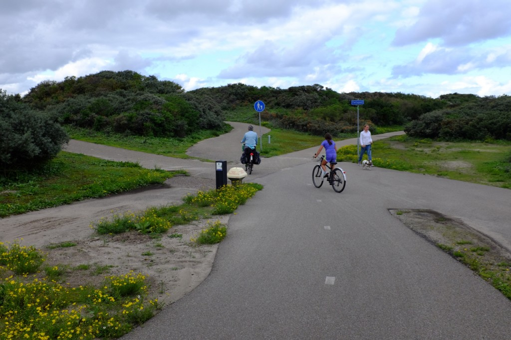 Sand dunes and bike paths