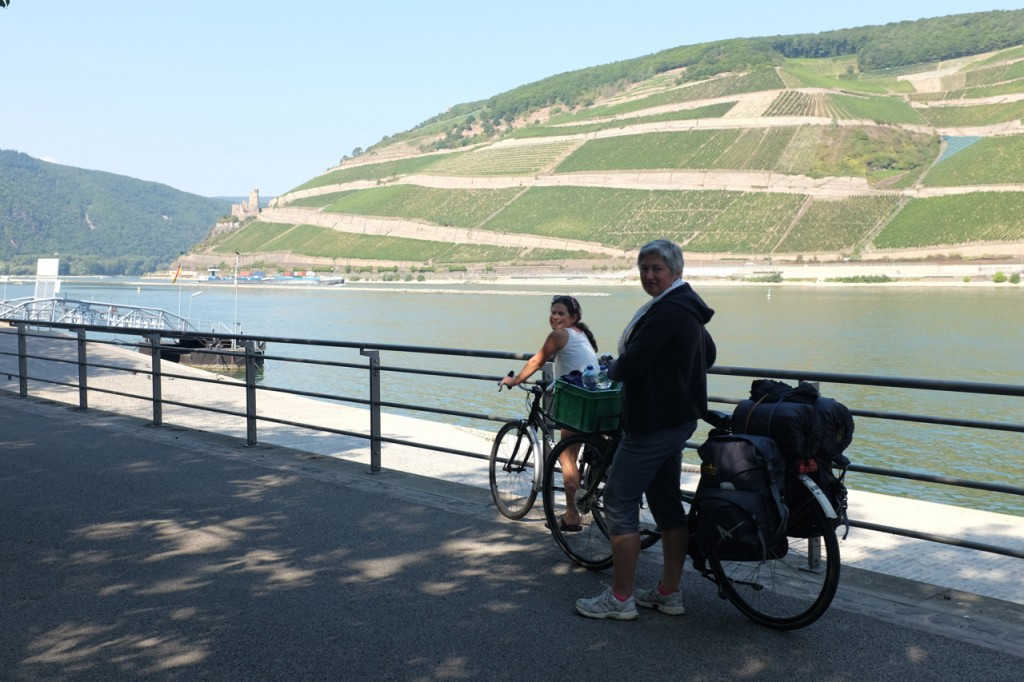 The view of terraced vineyards from Bingen