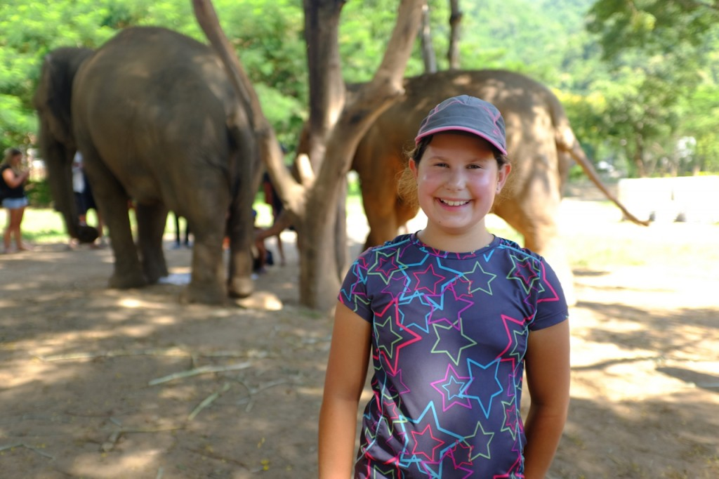 At the Elephant Nature Park Chiang Mai