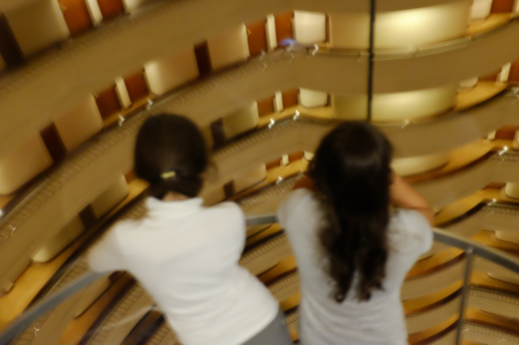 View from the glass elevator