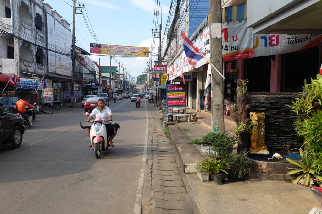 Dog on motorbike in Chiang Khong