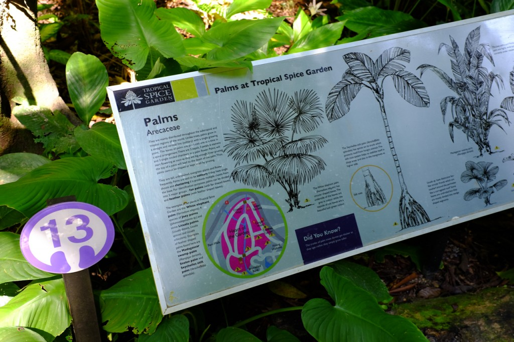 Lots of information about the local flora