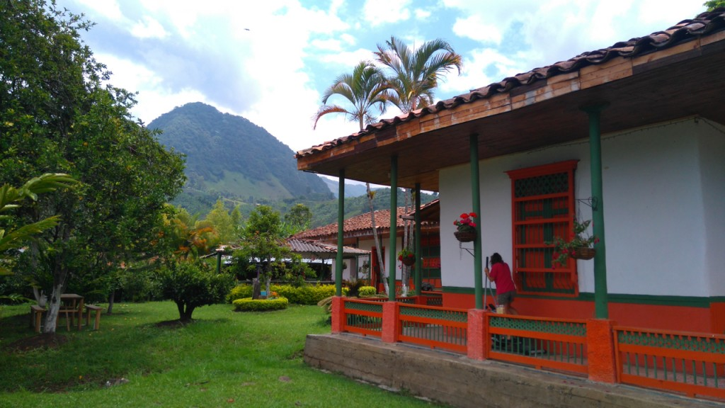 Side yard and mountains in background