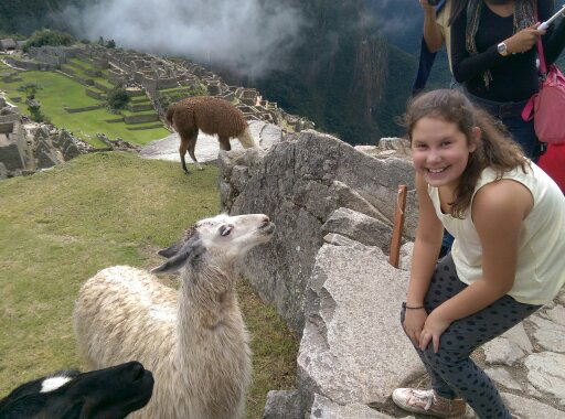Fun with the llamas